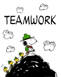 Effectiveness rules for teams: improving teamwork skills and thrive